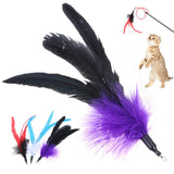 5Pcs/lot Soft Dangle Feather Cat Toy Replacement Heads Kitten Cat Treaser Interactive Toys Pet Supplies Cat Products