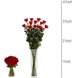 3 Feet Tall Collection – Red Roses