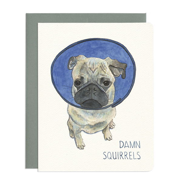 'Damn Squirrels' Card
