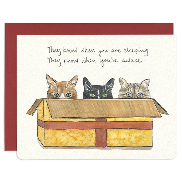 'Cats in a Box' Holiday Card