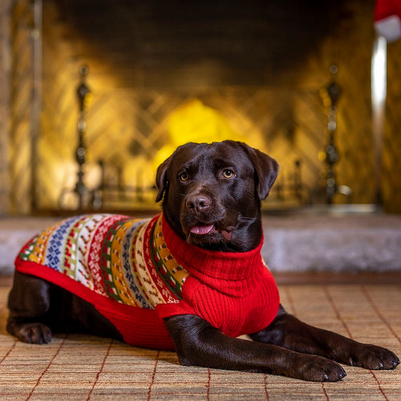 Merry Christmas Dog Sweater