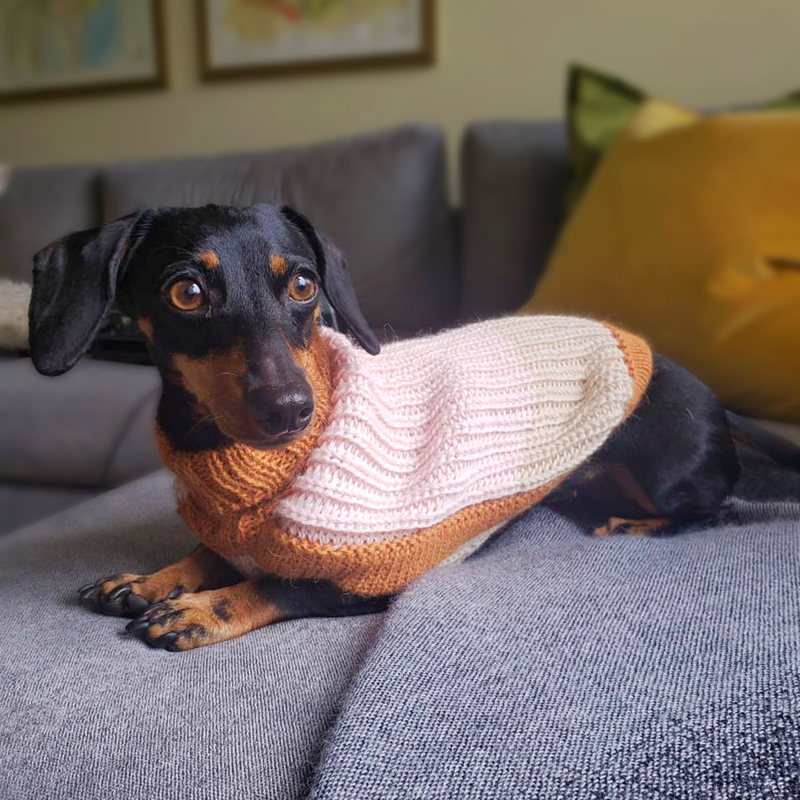 Soft Dreams Dog Sweater