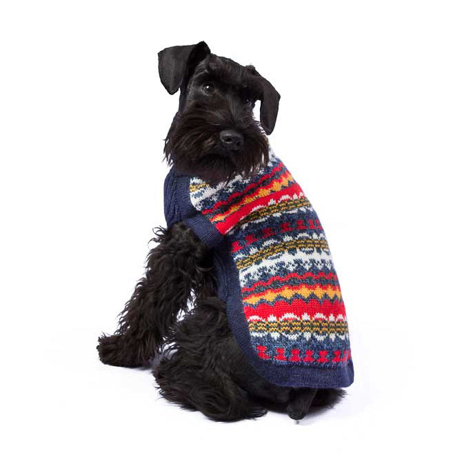 Multicolor Dream Dog Sweater