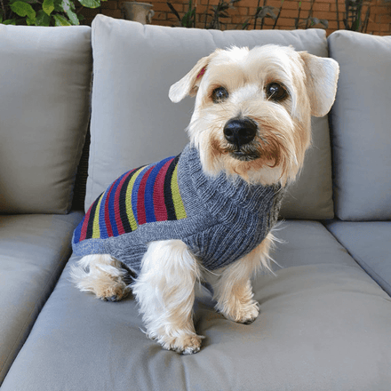 Alqowasi Yappy Stripes Dog Sweater