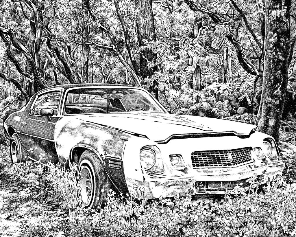 Chevy Camero Artist Bob Weaver Giclee Art Prints for home Canvas Wrap Classic Car Muscle Cars Pen and Ink Drawing