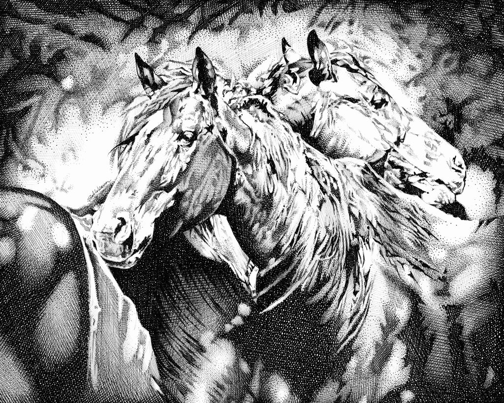 Two Horses horse lovers Artist Bob Weaver pen and ink drawing wall art canvas wrap giclee print