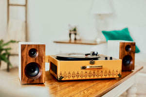Fremont Bookshelf Speaker | DIY Build Kit
