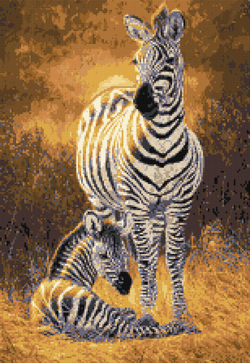 A new day - zebras counted cross stitch kit