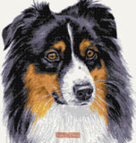 Australian Shepherd counted cross stitch kit