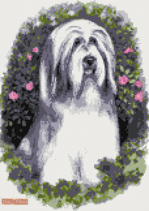 Bearded Collie counted cross stitch kit
