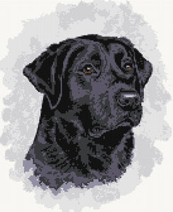 Black labrador No5 counted cross stitch kit