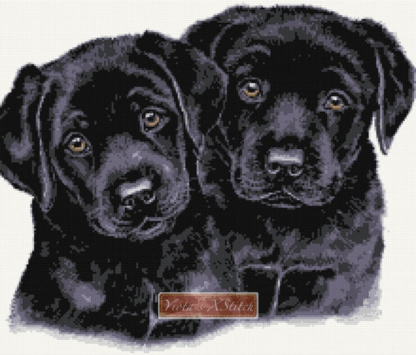 Black labrador puppies counted cross stitch kit