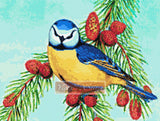 Blue tit bird counted cross stitch kit