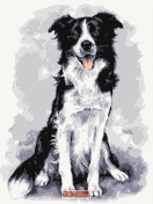 Border Collie No8 counted cross stitch kit
