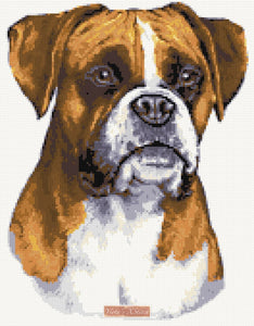 Boxer counted cross stitch kit