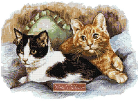 Cats best friends counted cross stitch kit