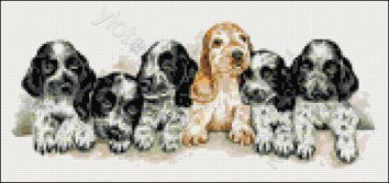 Cocker spaniel puppies counted cross stitch kit