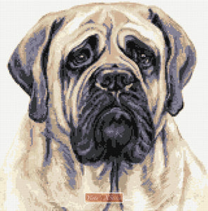 English Bullmastiff counted cross stitch kit