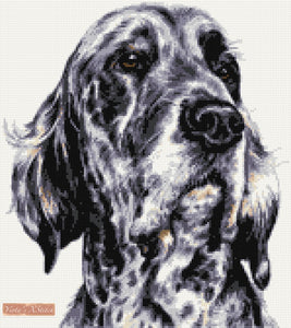 English setter counted cross stitch kit