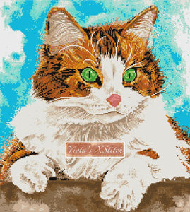 Fluffy ginger cat counted cross stitch kit