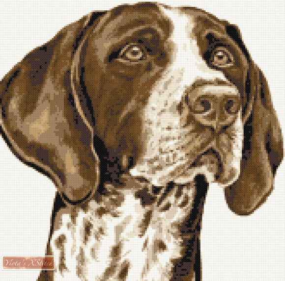 German shorthaired pinter counted cross stitch kit