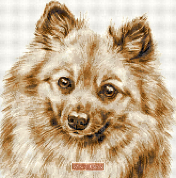German spitz counted cross stitch kit