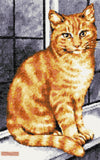 Ginger cat at the window counted cross stitch kit