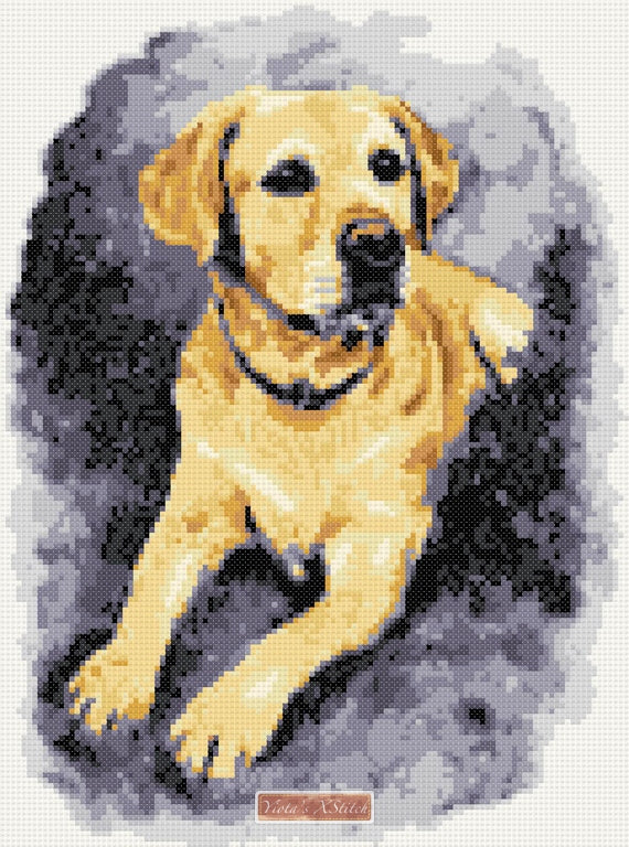 Golden labrador counted cross stitch kit