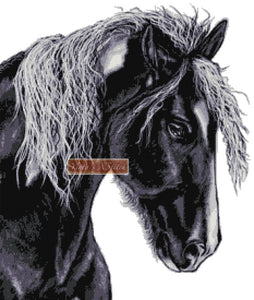 Black horse No6 counted cross stitch kit