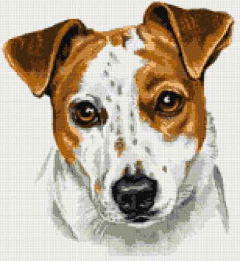 Jack Russell portrait counted cross stitch kit