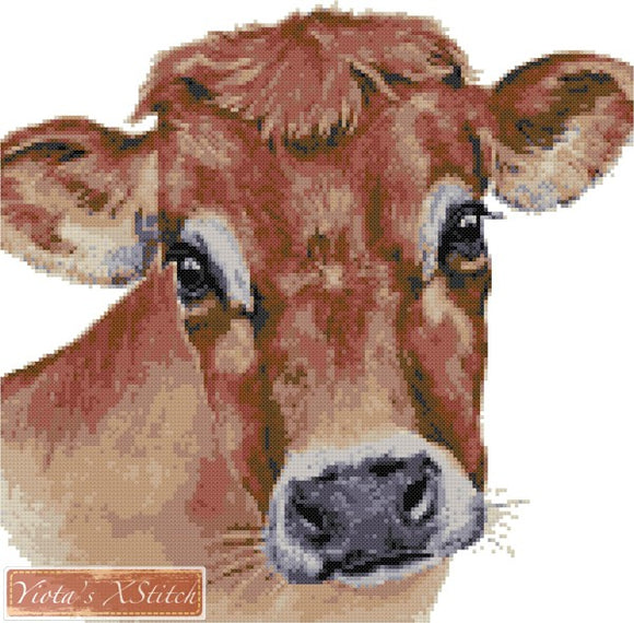 Jersey cow counted cross stitch kit
