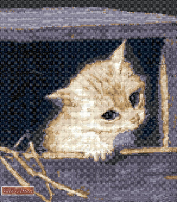 Kitten in a box counted cross stitch kit