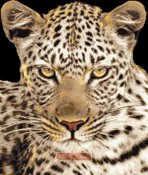 Leopard stare counted cross stitch kit