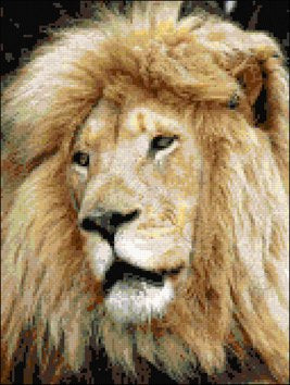 Lion face counted cross stitch kit