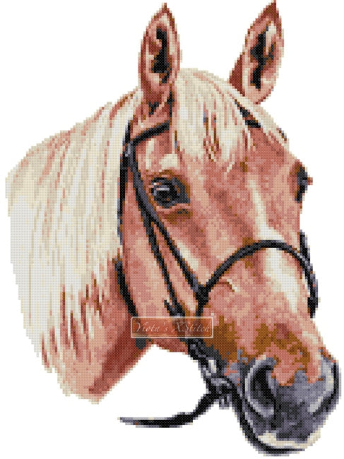Palomino horse counted cross stitch kit