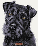 Patterdale Terrier counted cross stitch kit
