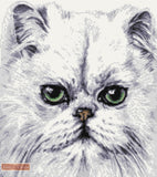 Persian white cat counted cross stitch kit