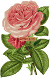 Pink rose counted cross stitch kit