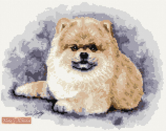 Pomeranian counted cross stitch kit
