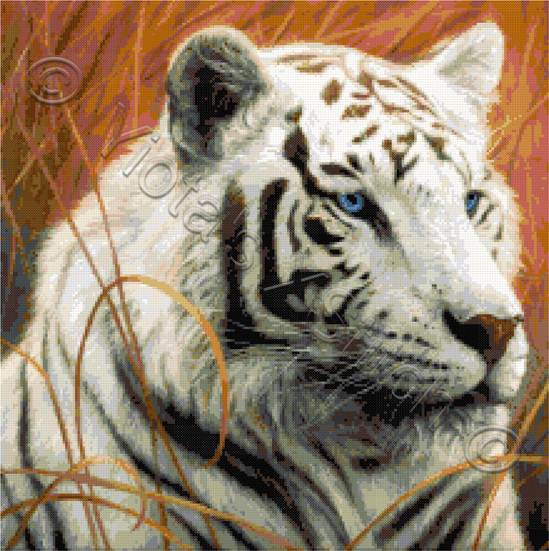 Portrait white tiger counted cross stitch kit