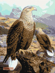 Proud eagle counted cross stitch kit.