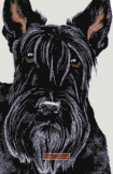 Scottish Terrier v2 counted cross stitch kit