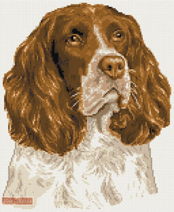 Springer Spaniel counted cross stitch kit