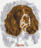 Springer Spaniel No7 counted cross stitch kit