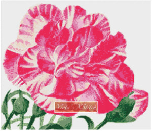 Striped carnation flower counted cross stitch kit