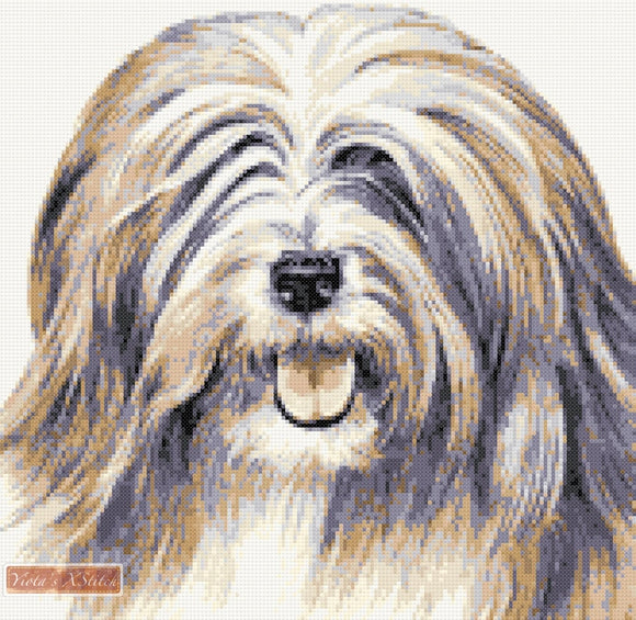 Tibetan Terrier No1 counted cross stitch kit