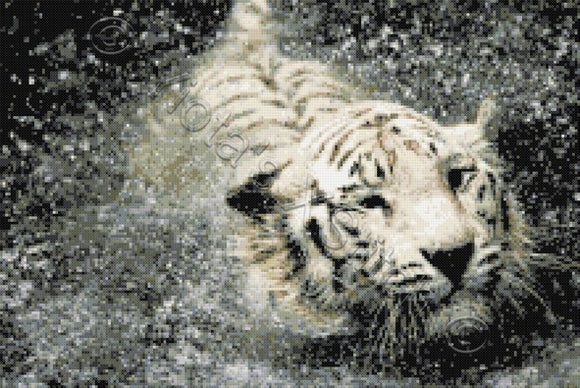 White tiger in water counted cross stitch kit