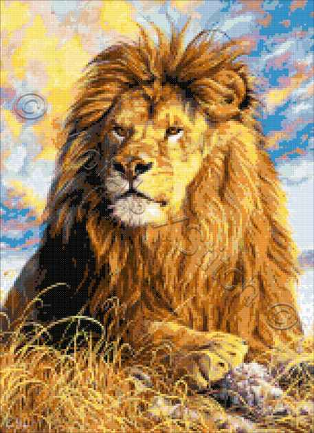 Watchful eyes lion counted cross stitch kit