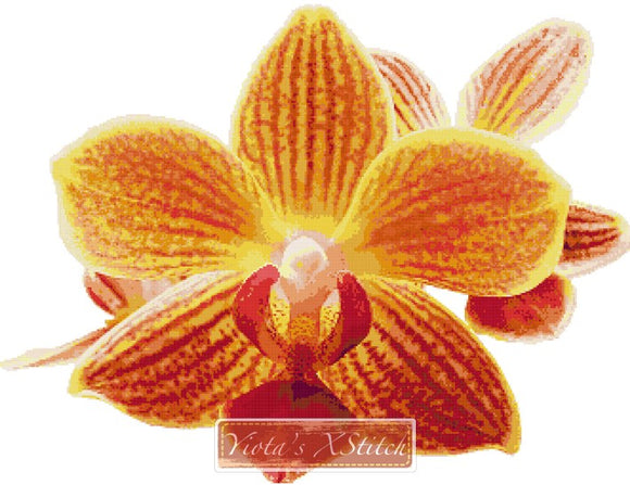 Yellow orchid counted cross stitch kit
