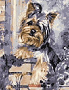 Yorkie on fence counted cross stitch kit